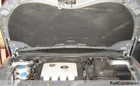 Amortiguadores del capó del motor montados